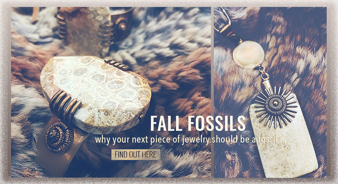 The Life Stones - Fall Fossils - What Makes them So Special?
